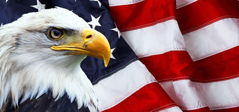 American Eagle in front of flag
