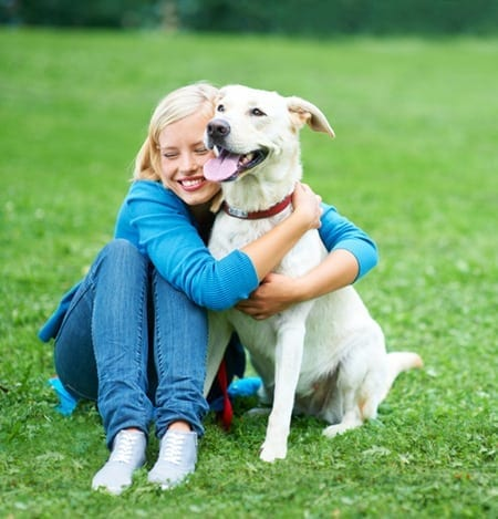 Pet Diabetes & Human Diabetes: What's the Difference?