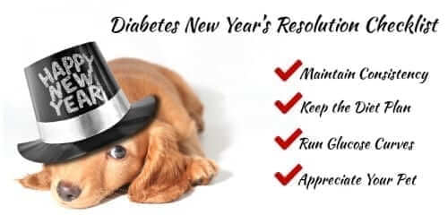 2017 Pet New Years Resolution