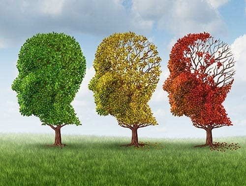 Diabetes and Alzheimer's – What's the Connection?