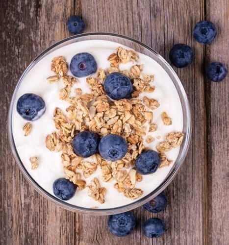 Gut Bacteria Foods