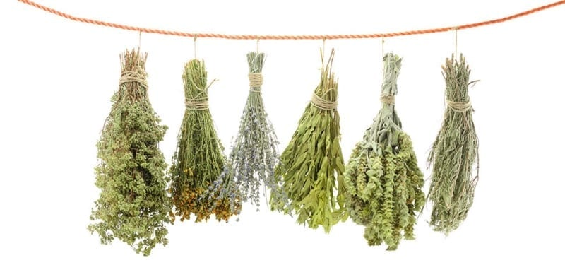 Hanging Variety of Herbs