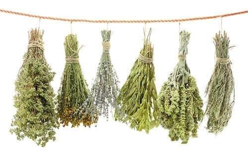 Dried Herbs