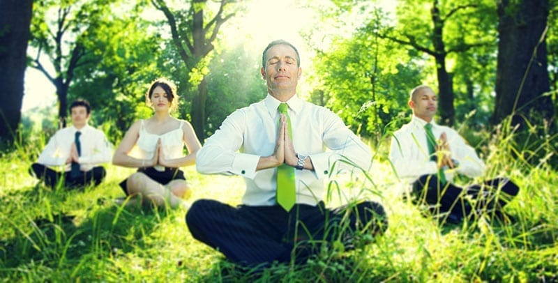 Working Professionals Meditating in Nature