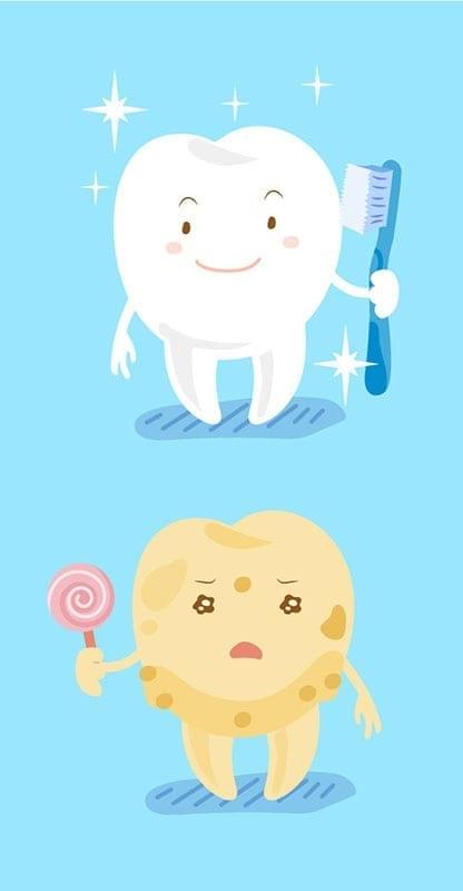 Tooth Enamel Concept