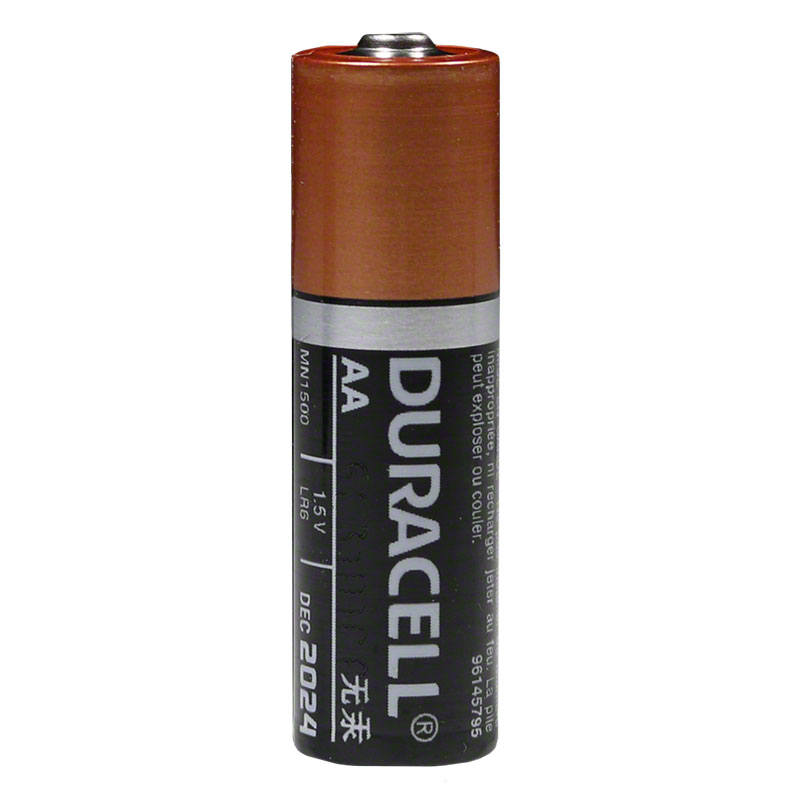 AA Batteries - Pack of 1