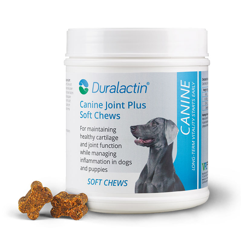 Duralactin Canine Joint Plus - 90 Soft Chews Pack of 6