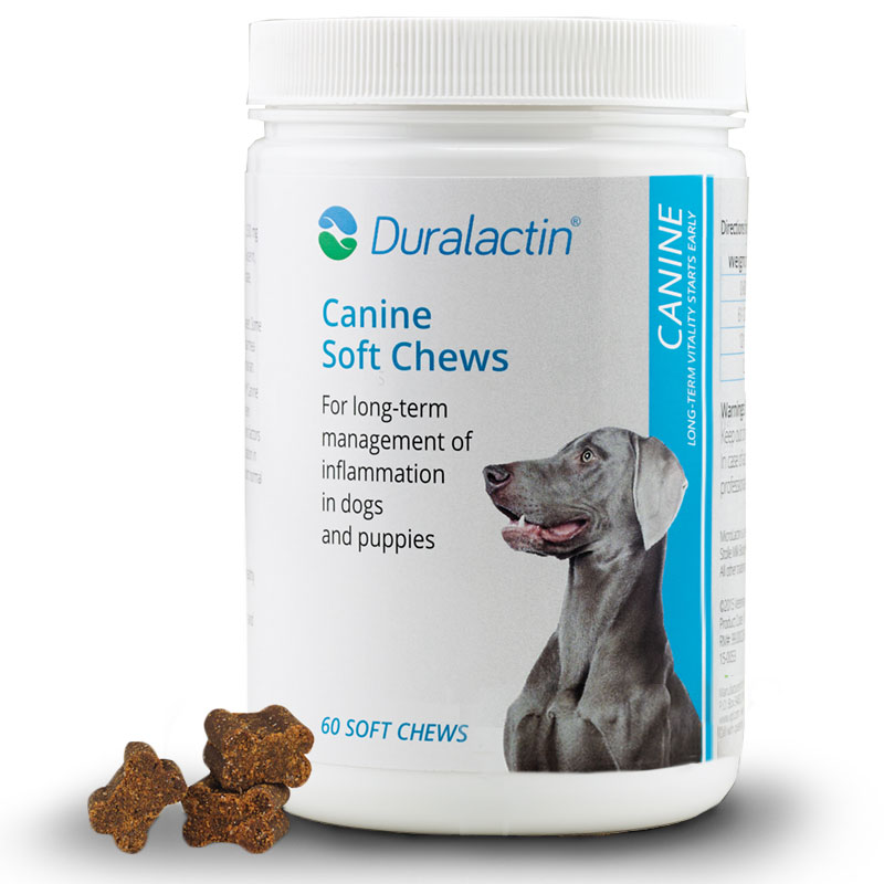 Duralactin Canine - 60 Soft Chews Pack of 6