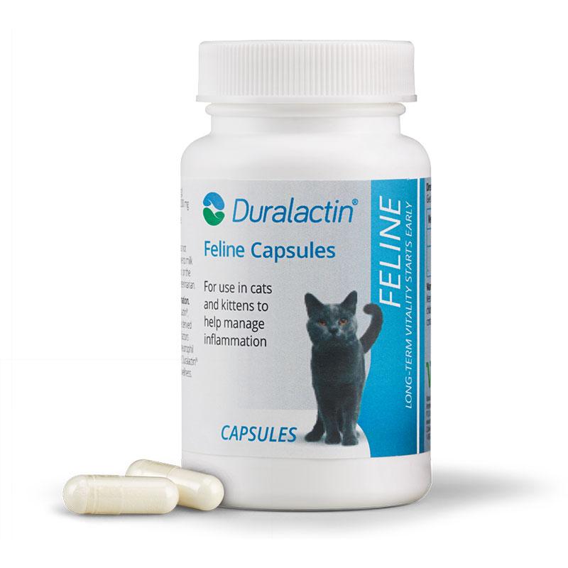Duralactin Feline - 60 Capsules Pack of 3