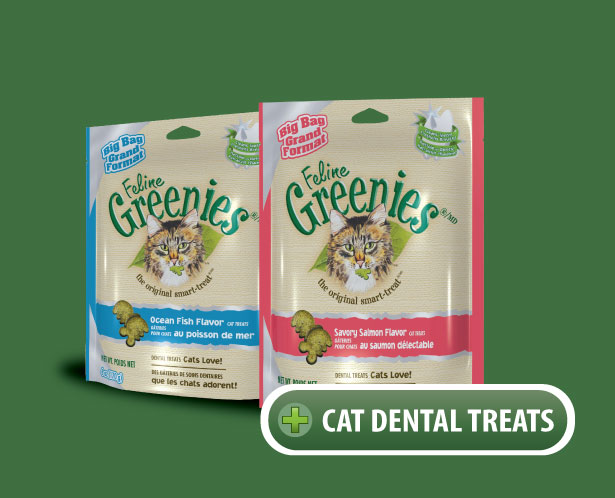 Greenies Cat Dental Treats