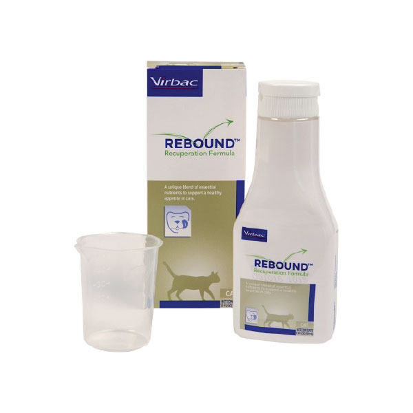 REBOUND Recuperation Formula For Cats 5.1oz Bottle - Pack of 12