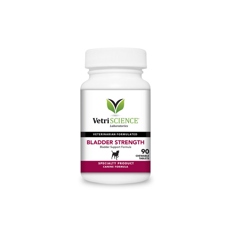 VetriScience Bladder Strength Chewable Tablets For Dogs 90ct