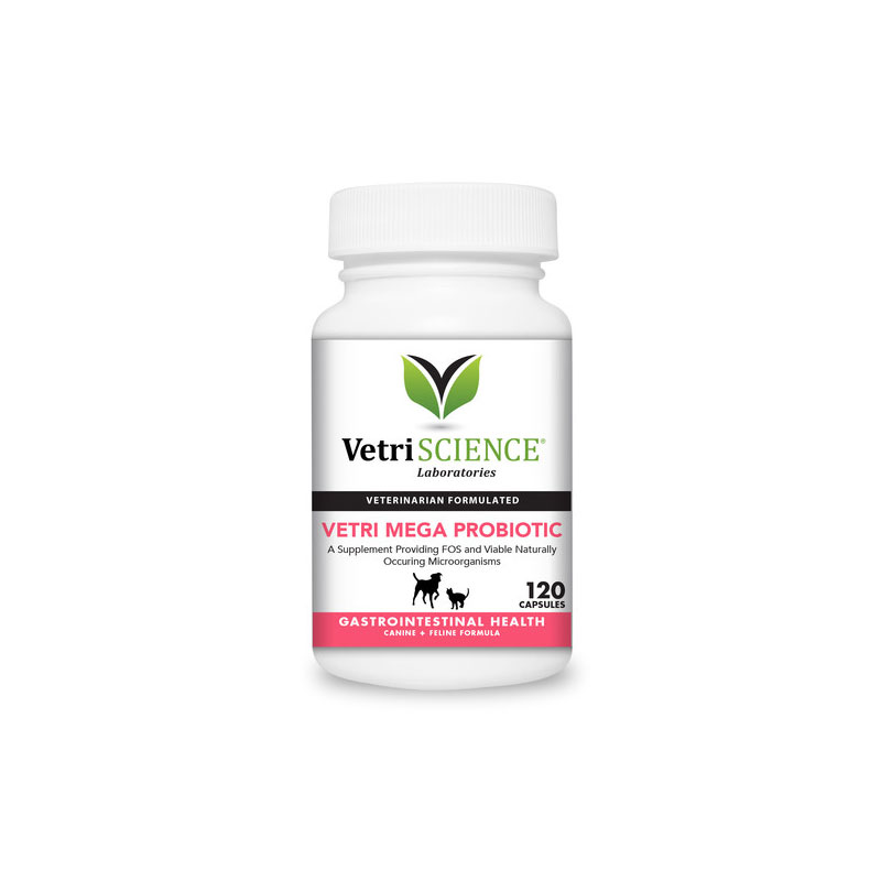 VetriScience Vetri Mega Probiotic For Cats & Dogs 120ct Pack of 3